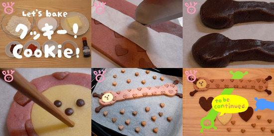 nobygirlcookie.jpg